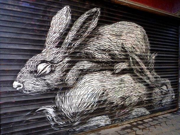 Street Art Roa 12