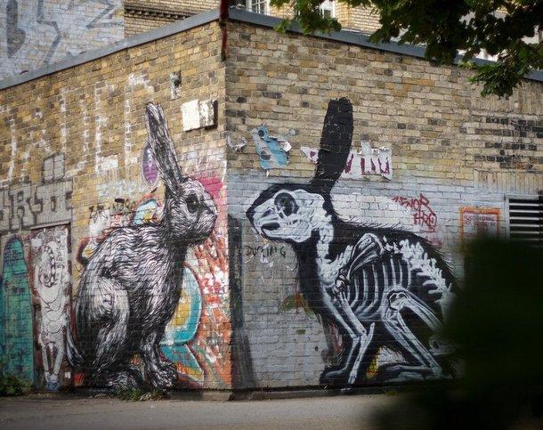Street Art Roa 06