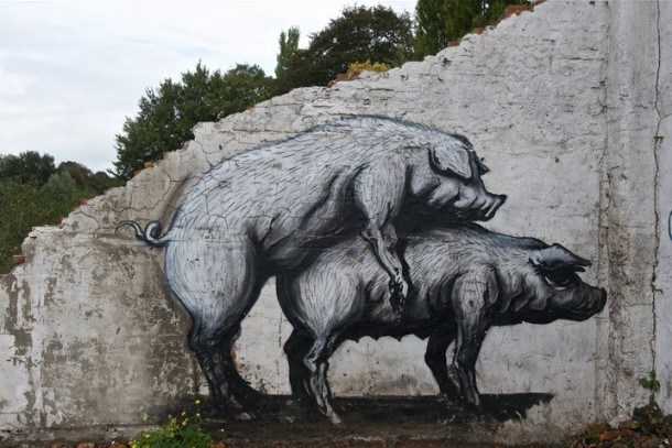 Street Art Roa 04