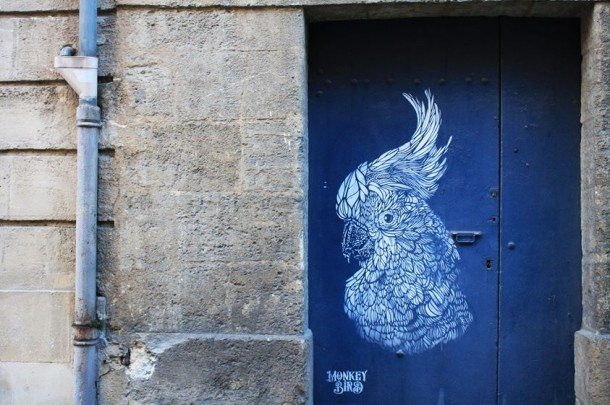 Monkey bird art urbain 5
